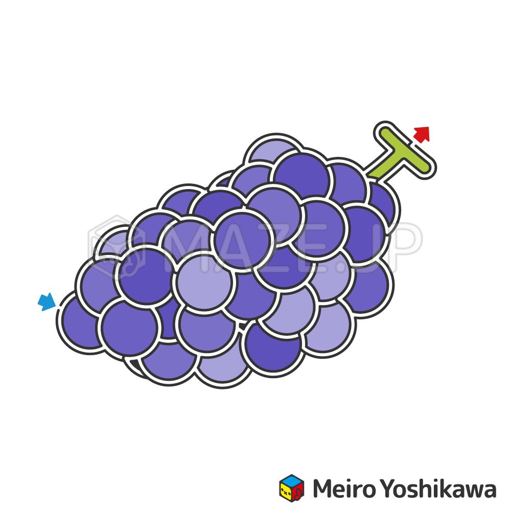 Grape maze